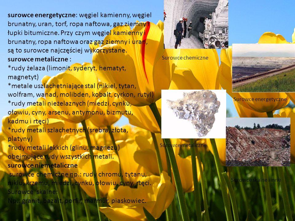 surowce energetyczne: węgiel kamienny, węgiel brunatny, uran, torf, ropa naftowa, gaz ziemny i łupki bitumiczne. Przy czym węgiel kamienny i brunatny,