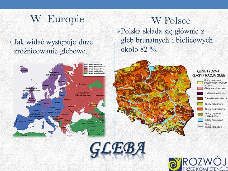 W Europie W Polsce Jak widać występuje duże zróżnicowanie glebowe. Polska składa się głównie z gleb brunatnych i bielicowych około 82 %.