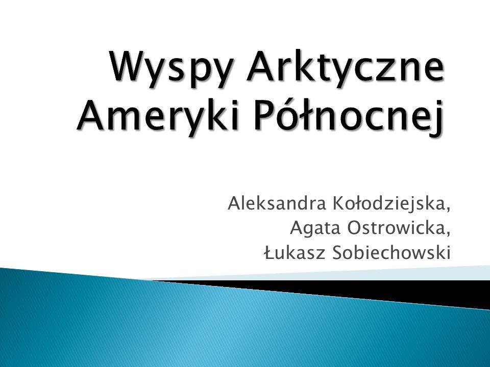 Aleksandra Kołodziejska, Agata Ostrowicka, Łukasz Sobiechowski