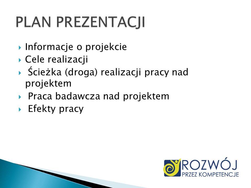 Informacje o projekcie Cele realizacji Ścieżka (droga) realizacji pracy nad projektem Praca badawcza nad projektem Efekty pracy