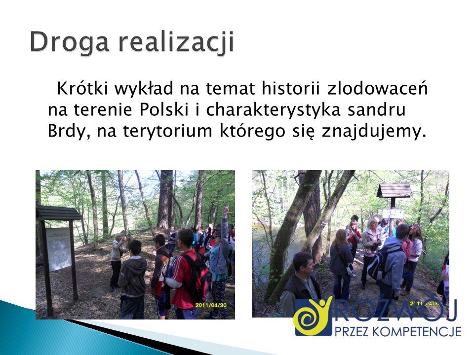 Krótki wykład na temat historii zlodowaceń na terenie Polski i charakterystyka sandru Brdy, na terytorium którego się znajdujemy.
