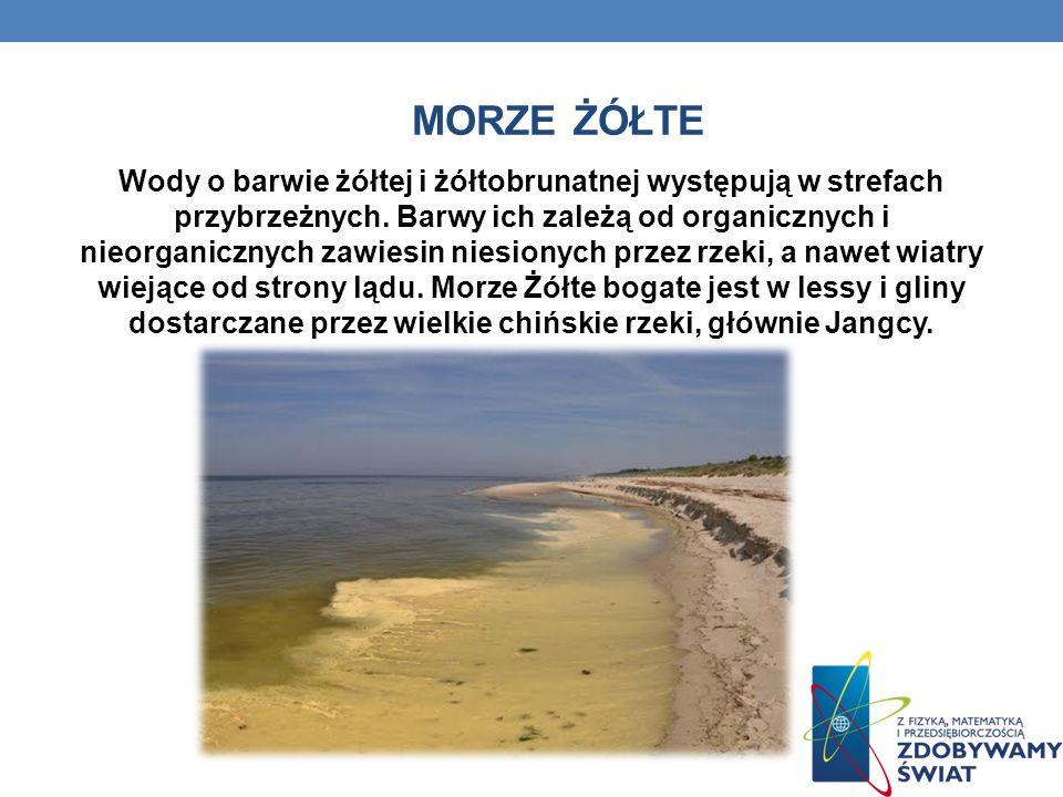MORZE ŻÓŁTE Wody o barwie żółtej i żółtobrunatnej występują w strefach przybrzeżnych.