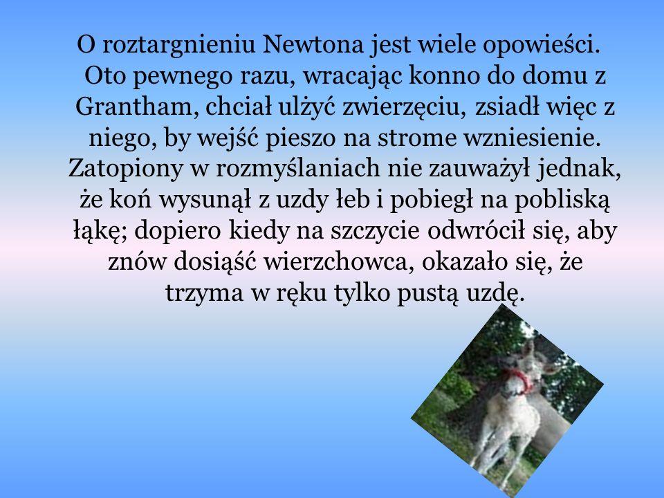 O roztargnieniu Newtona jest wiele opowieści. Oto pewnego razu, wracając konno do domu z Grantham, chciał ulżyć zwierzęciu, zsiadł więc z niego, by we