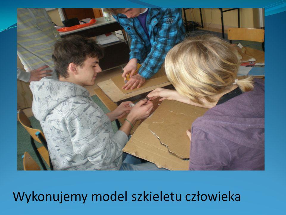 Wykonujemy model szkieletu człowieka