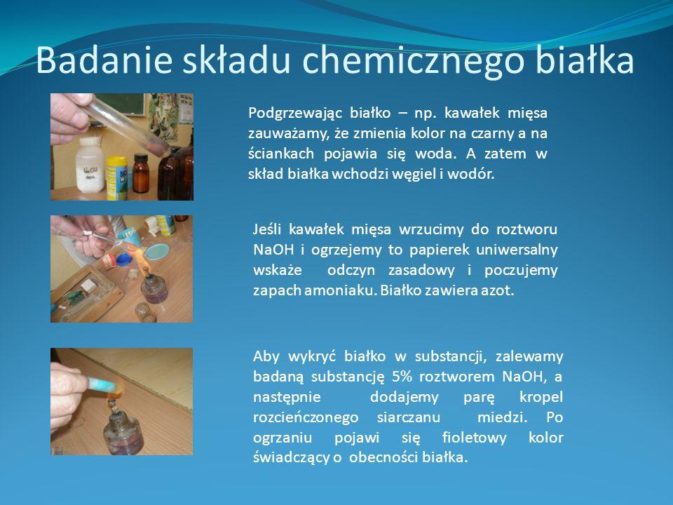 Badanie składu chemicznego białka Podgrzewając białko – np.