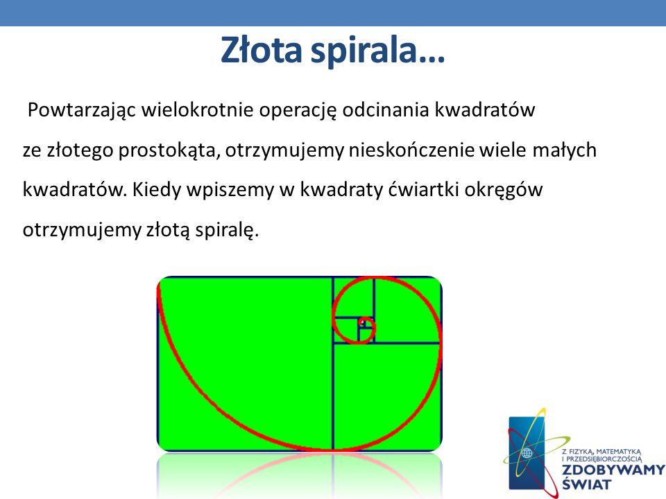 Powtarzając wielokrotnie operację odcinania kwadratów ze złotego prostokąta, otrzymujemy nieskończenie wiele małych kwadratów.