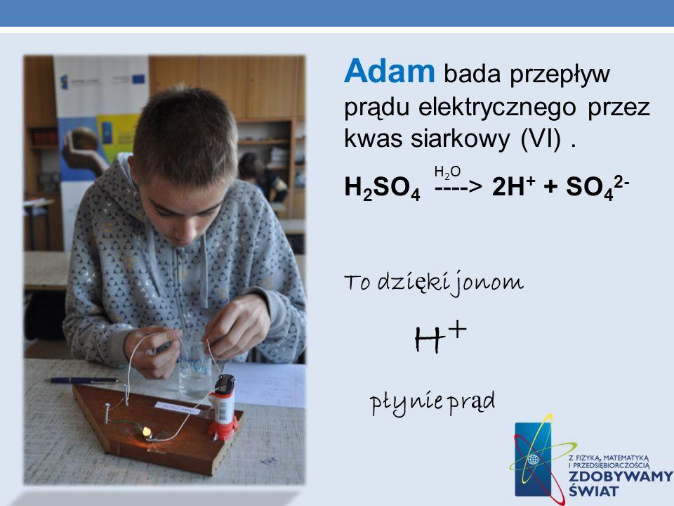 Adam bada przepływ prądu elektrycznego przez kwas siarkowy (VI).