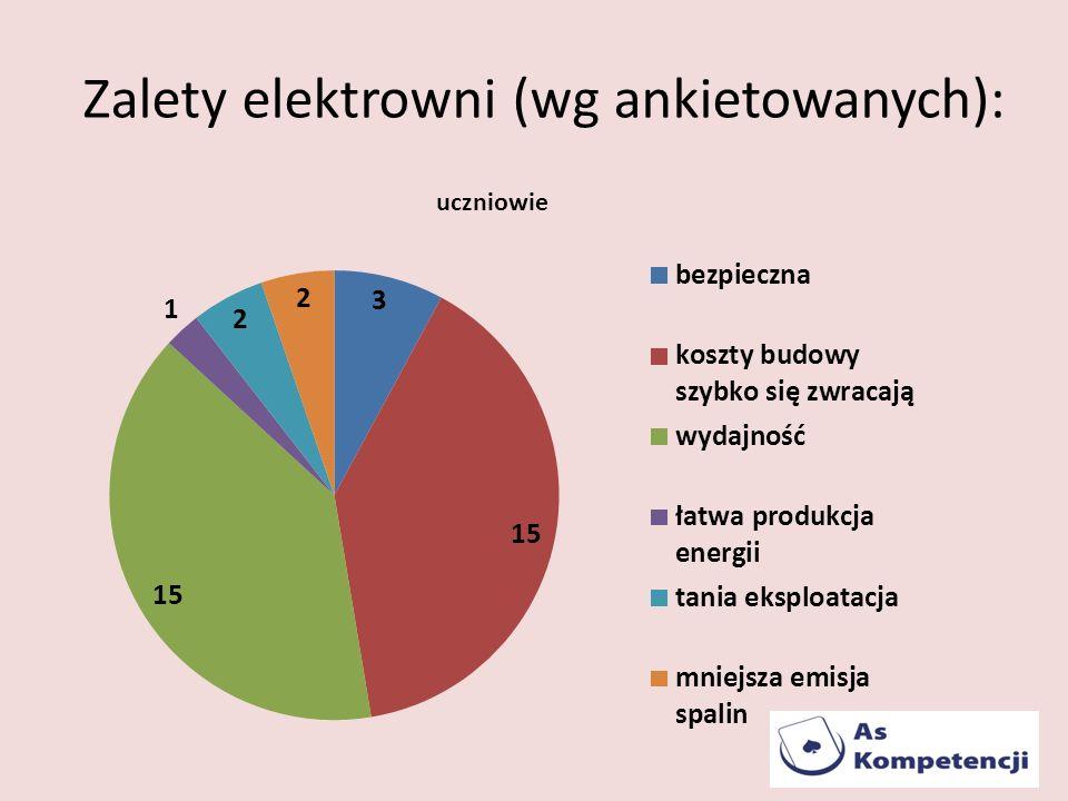 Zalety elektrowni (wg ankietowanych):