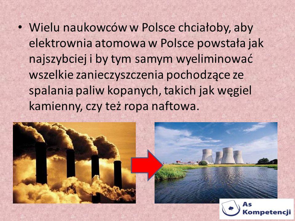Wielu naukowców w Polsce chciałoby, aby elektrownia atomowa w Polsce powstała jak najszybciej i by tym samym wyeliminować wszelkie zanieczyszczenia po