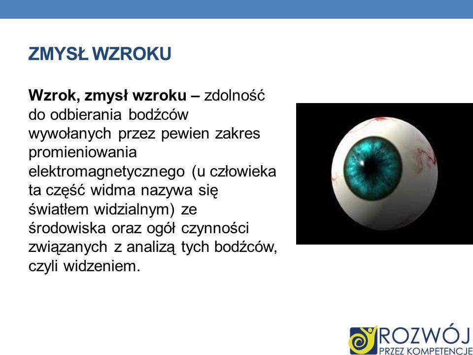 ZMYSŁ WZROKU Wzrok, zmysł wzroku – zdolność do odbierania bodźców wywołanych przez pewien zakres promieniowania elektromagnetycznego (u człowieka ta c