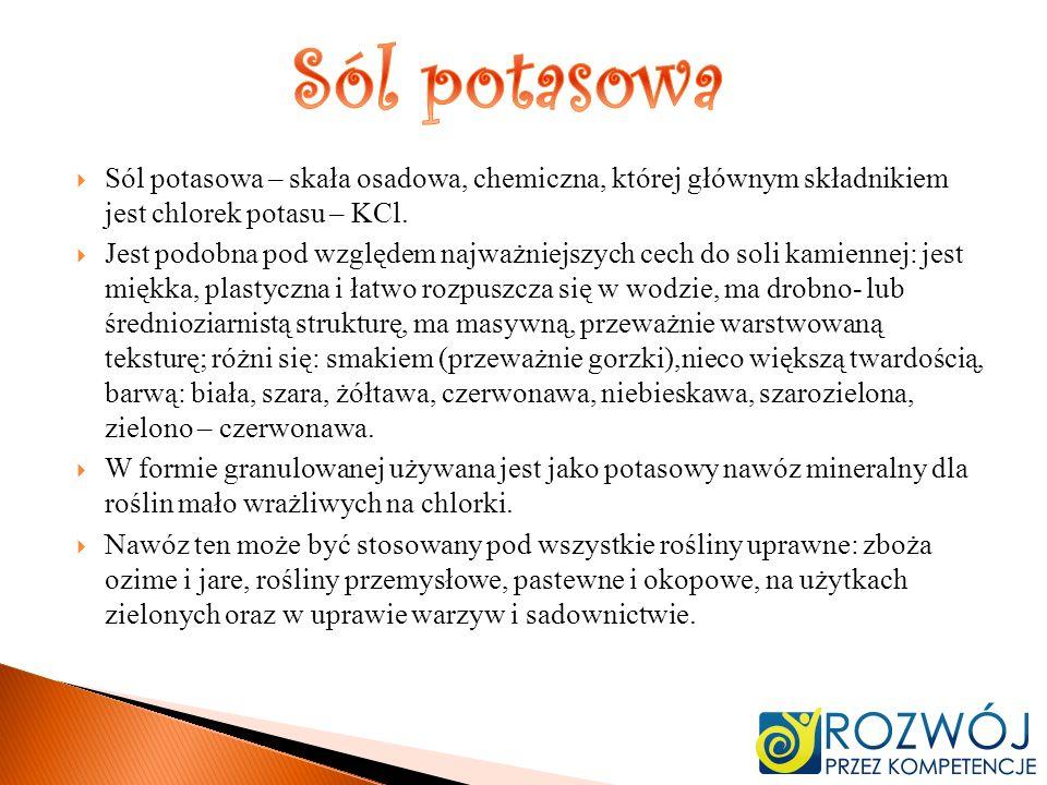 Sól potasowa – skała osadowa, chemiczna, której głównym składnikiem jest chlorek potasu – KCl. Jest podobna pod względem najważniejszych cech do soli