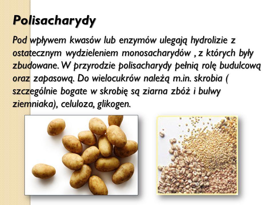 Polisacharydy Pod wpływem kwasów lub enzymów ulegają hydrolizie z ostatecznym wydzieleniem monosacharydów, z których były zbudowane. W przyrodzie poli