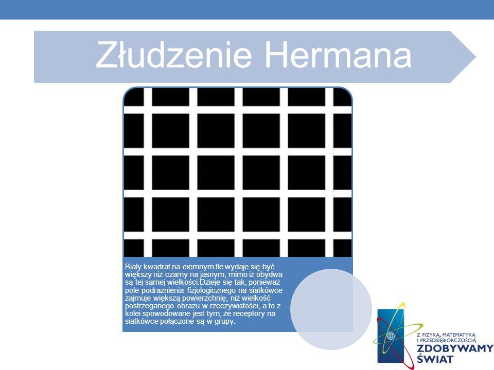 Złudzenie Hermana Biały kwadrat na ciemnym tle wydaje się być większy niż czarny na jasnym, mimo iż obydwa są tej samej wielkości.Dzieje się tak, ponieważ pole podrażnienia fizjologicznego na siatkówce zajmuje większą powierzchnię, niż wielkość postrzeganego obrazu w rzeczywistości, a to z kolei spowodowane jest tym, że receptory na siatkówce połączone są w grupy.