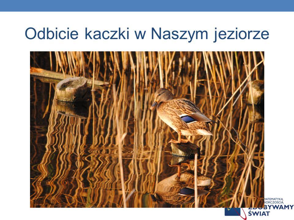 Płasko wklęsła Soczewki nie muszą być też wypukłe.