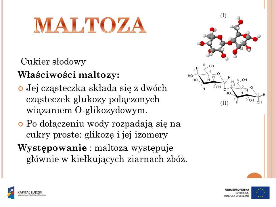 Cukier słodowy Właściwości maltozy: Jej cząsteczka składa się z dwóch cząsteczek glukozy połączonych wiązaniem O-glikozydowym. Po dołączeniu wody rozp
