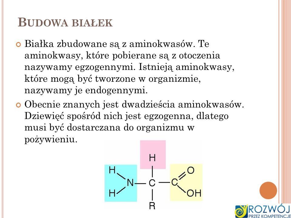 B UDOWA BIAŁEK Białka zbudowane są z aminokwasów. Te aminokwasy, które pobierane są z otoczenia nazywamy egzogennymi. Istnieją aminokwasy, które mogą
