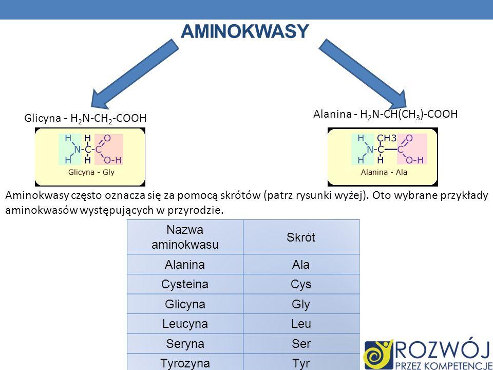 AMINOKWASY Glicyna - H 2 N-CH 2 -COOH Alanina - H 2 N-CH(CH 3 )-COOH Aminokwasy często oznacza się za pomocą skrótów (patrz rysunki wyżej). Oto wybran