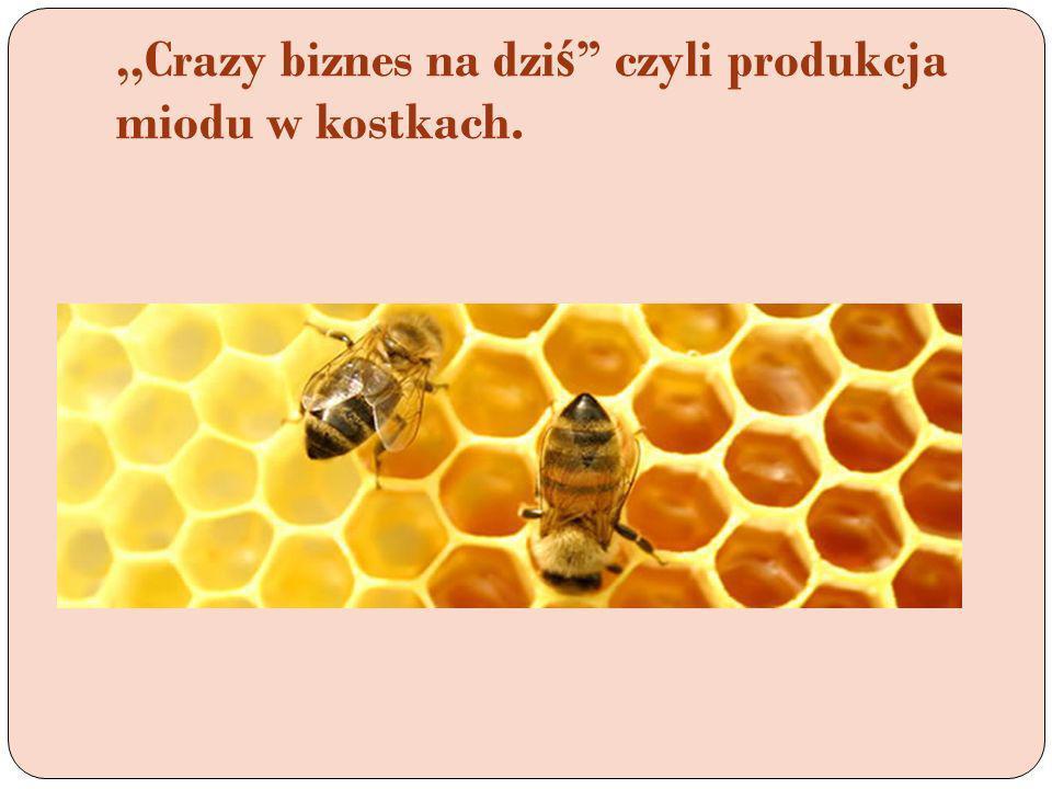 ,,Crazy biznes na dzi ś czyli produkcja miodu w kostkach.