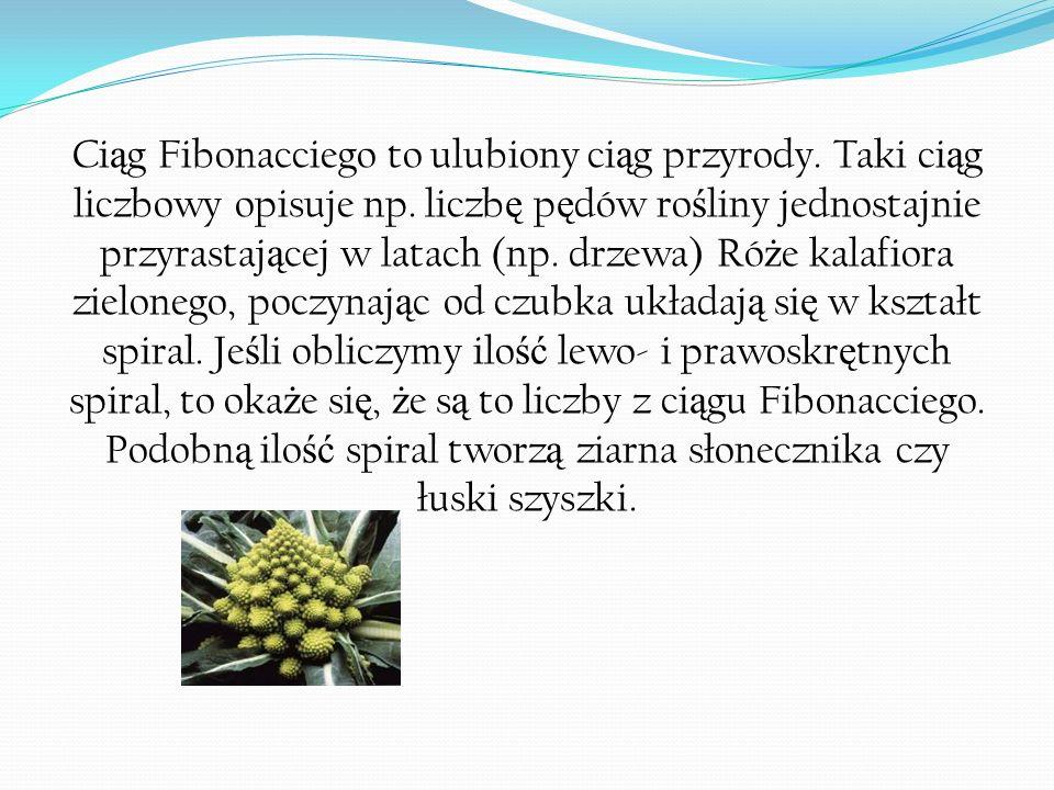 Ci ą g Fibonacciego to ulubiony ci ą g przyrody. Taki ci ą g liczbowy opisuje np. liczb ę p ę dów ro ś liny jednostajnie przyrastaj ą cej w latach (np
