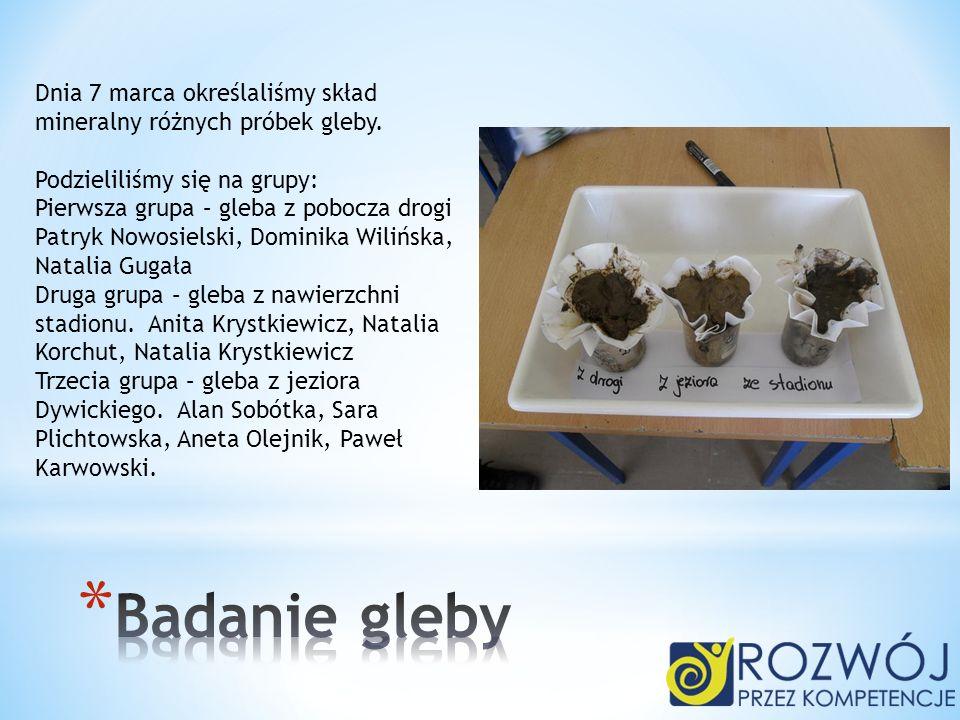 Dnia 7 marca określaliśmy skład mineralny różnych próbek gleby. Podzieliliśmy się na grupy: Pierwsza grupa – gleba z pobocza drogi Patryk Nowosielski,