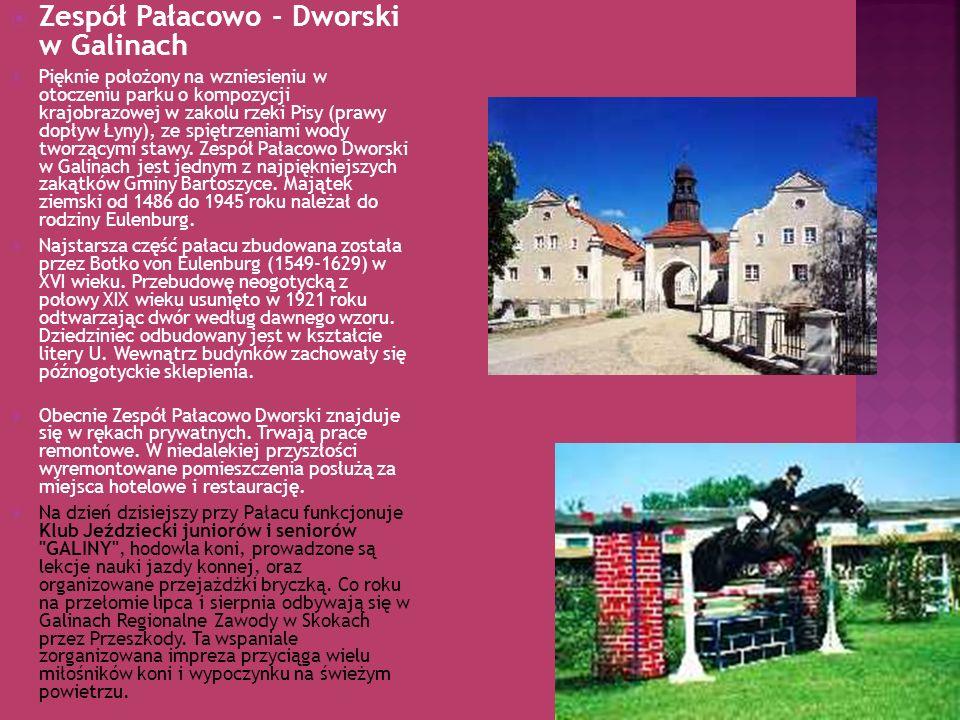 Zespół Pałacowo - Dworski w Galinach Pięknie położony na wzniesieniu w otoczeniu parku o kompozycji krajobrazowej w zakolu rzeki Pisy (prawy dopływ Ły