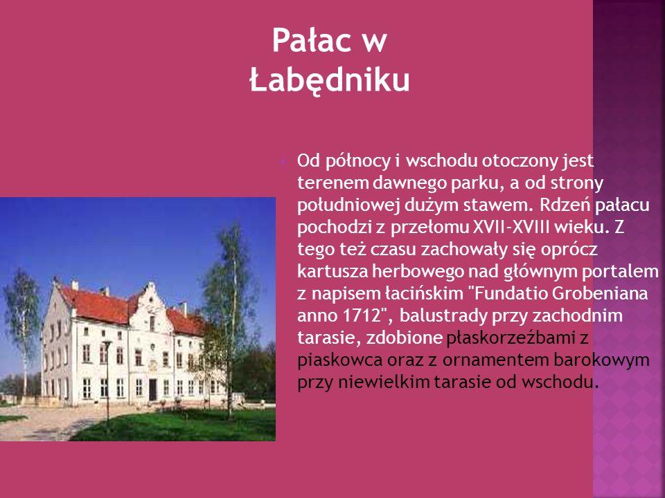 Od północy i wschodu otoczony jest terenem dawnego parku, a od strony południowej dużym stawem. Rdzeń pałacu pochodzi z przełomu XVII-XVIII wieku. Z t