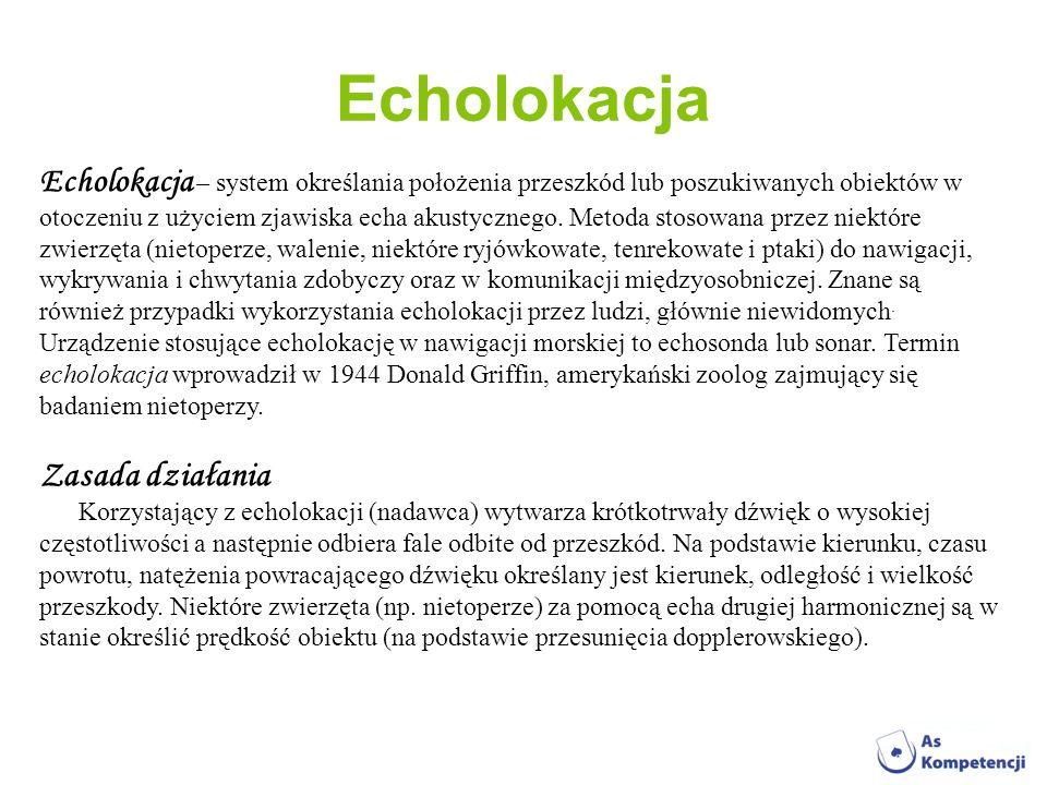 Echolokacja Echolokacja – system określania położenia przeszkód lub poszukiwanych obiektów w otoczeniu z użyciem zjawiska echa akustycznego. Metoda st