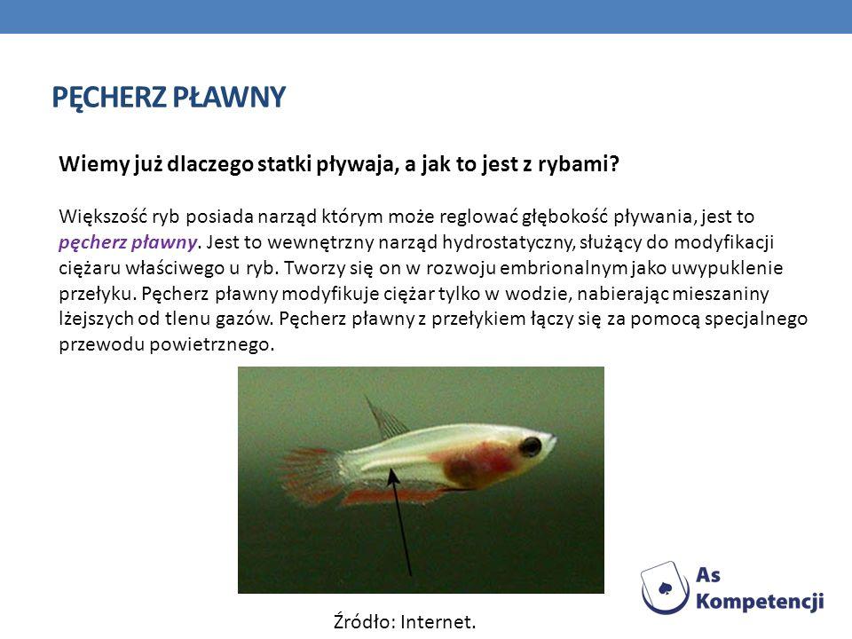 PĘCHERZ PŁAWNY Wiemy już dlaczego statki pływaja, a jak to jest z rybami? Większość ryb posiada narząd którym może reglować głębokość pływania, jest t