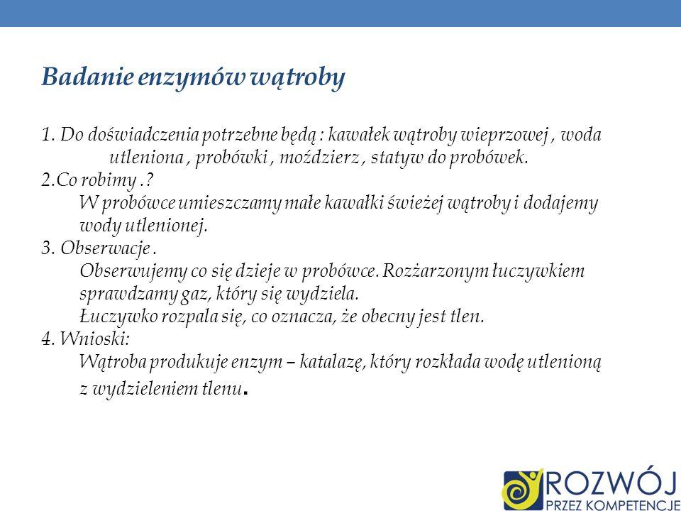 Badanie enzymów wątroby 1. Do doświadczenia potrzebne będą : kawałek wątroby wieprzowej, woda utleniona, probówki, moździerz, statyw do probówek. 2.Co