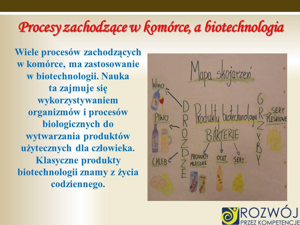 Procesy zachodzące w komórce, a biotechnologia Wiele procesów zachodzących w komórce, ma zastosowanie w biotechnologii. Nauka ta zajmuje się wykorzyst