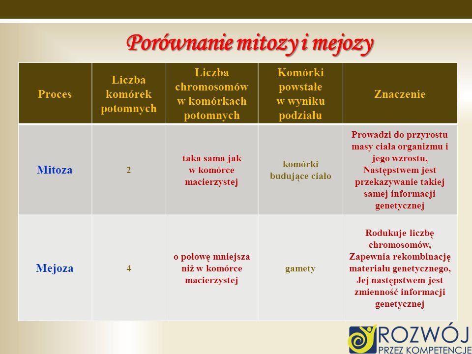 Porównanie mitozy i mejozy Proces Liczba komórek potomnych Liczba chromosomów w komórkach potomnych Komórki powstałe w wyniku podziału Znaczenie Mitoz