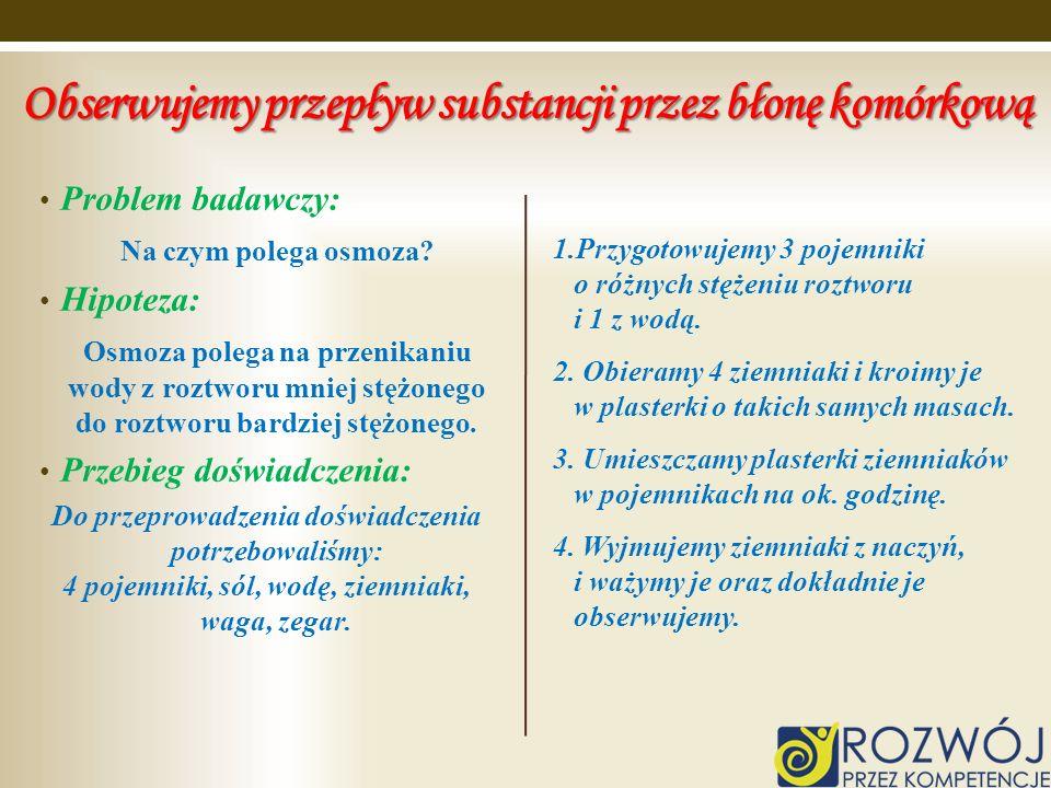 Obserwujemy przepływ substancji przez błonę komórkową Problem badawczy: Na czym polega osmoza? Hipoteza: Osmoza polega na przenikaniu wody z roztworu