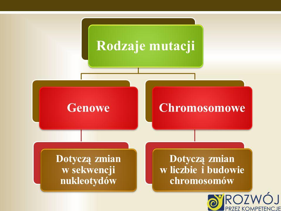 Rodzaje mutacji Genowe Dotyczą zmian w sekwencji nukleotydów Chromosomowe Dotyczą zmian w liczbie i budowie chromosomów