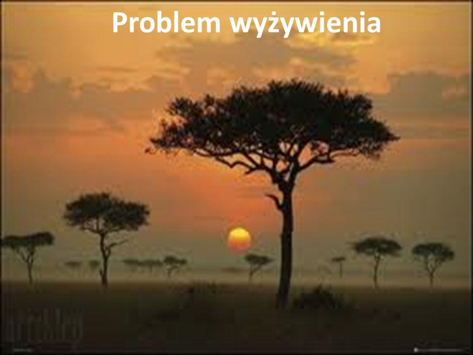 Ubóstwo, głód i niedożywienie to problemy, z którymi boryka się ludność państw o niskim poziomie ekonomicznym.