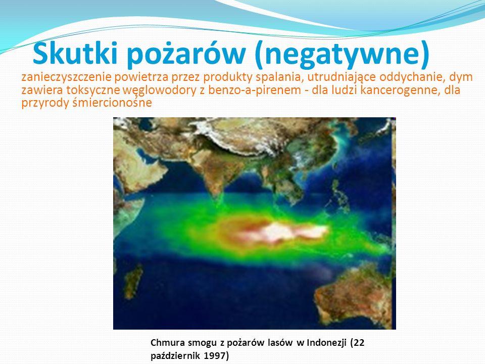 Skutki pożarów (negatywne) pożary lasów i puszcz są źródłem olbrzymiej emisji gazów szklarniowych emisje ze spalania biomasy zawierają składniki gazowe: dwutlenek węgla CO2, tlenek węgla CO, tlenki azotu NOx (= NO + NO2), metan (CH4), jak również większe węglowodory, oraz składniki stałe, zwłaszcza organiczne i sadza źródła tlenku węgla występującego w atmosferze, w skali globalnej [Tg = milion ton].