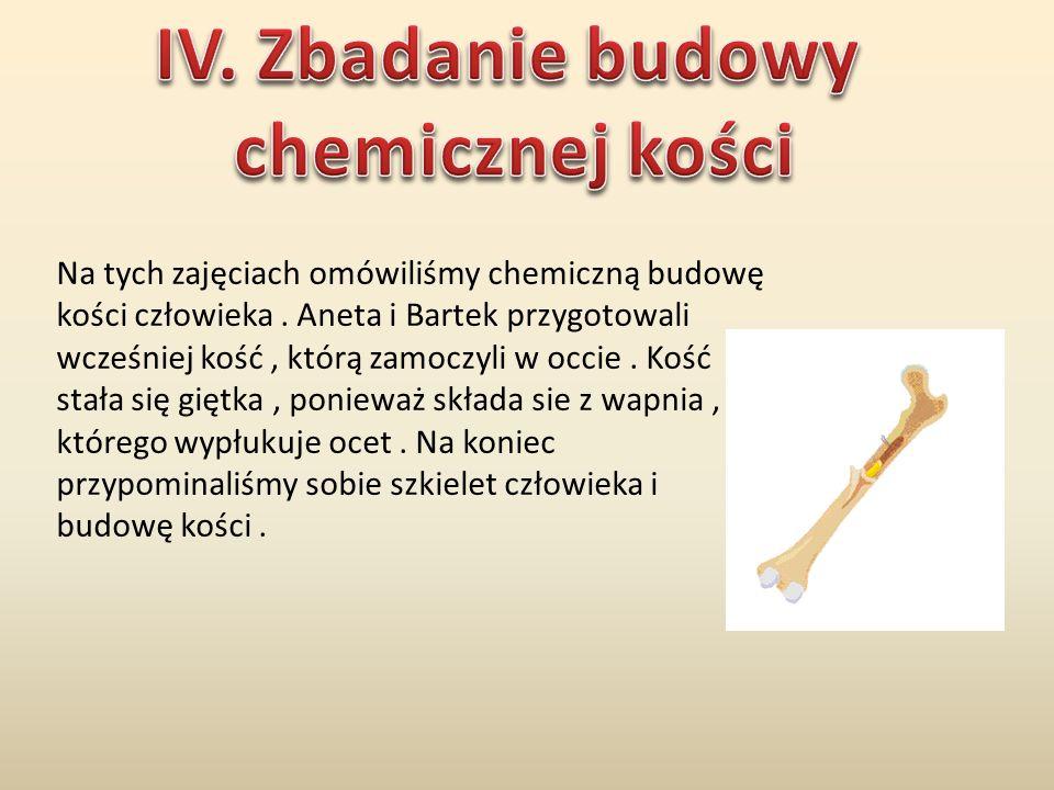 Na tych zajęciach omówiliśmy chemiczną budowę kości człowieka. Aneta i Bartek przygotowali wcześniej kość, którą zamoczyli w occie. Kość stała się gię