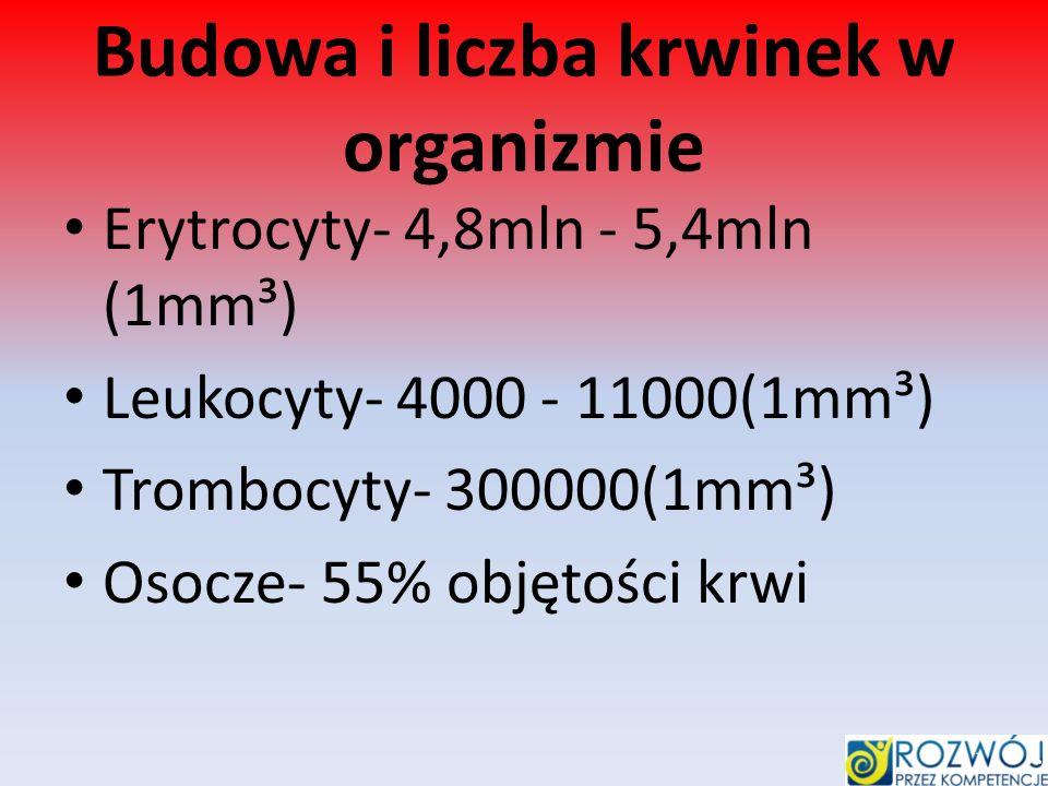 Budowa i liczba krwinek w organizmie Erytrocyty- 4,8mln - 5,4mln (1mm³) Leukocyty- 4000 - 11000(1mm³) Trombocyty- 300000(1mm³) Osocze- 55% objętości k