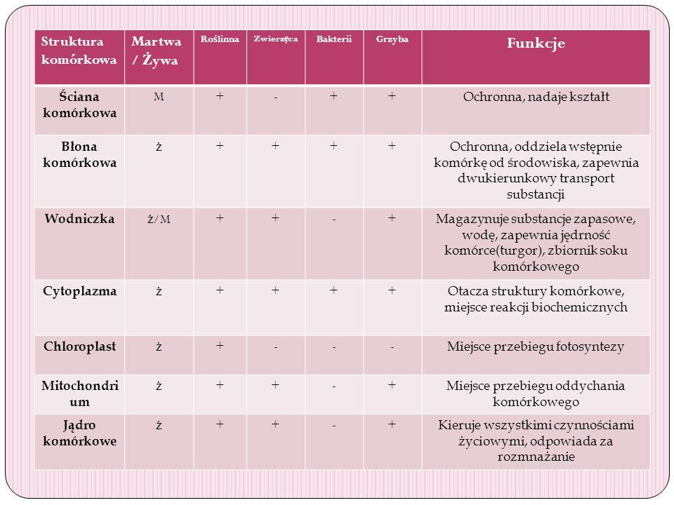 Porównanie budowy komórek różnych organizmów Struktura komórkowa Martwa / Ż ywa Ro ś linna Zwierz ę ca BakteriiGrzyba Funkcje Ściana komórkowa M+-++ O