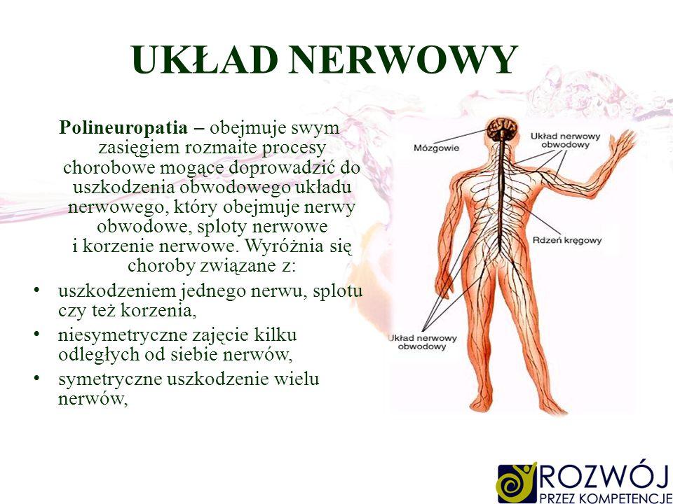 UKŁAD NERWOWY Polineuropatia – obejmuje swym zasięgiem rozmaite procesy chorobowe mogące doprowadzić do uszkodzenia obwodowego układu nerwowego, który