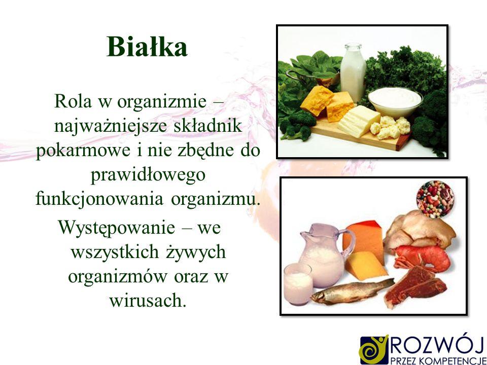 Białka Rola w organizmie – najważniejsze składnik pokarmowe i nie zbędne do prawidłowego funkcjonowania organizmu. Występowanie – we wszystkich żywych