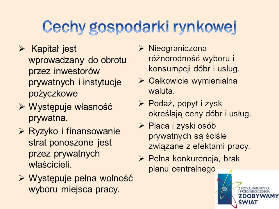 Kapitał jest wprowadzany do obrotu przez inwestorów prywatnych i instytucje pożyczkowe Występuje własność prywatna. Ryzyko i finansowanie strat ponosz
