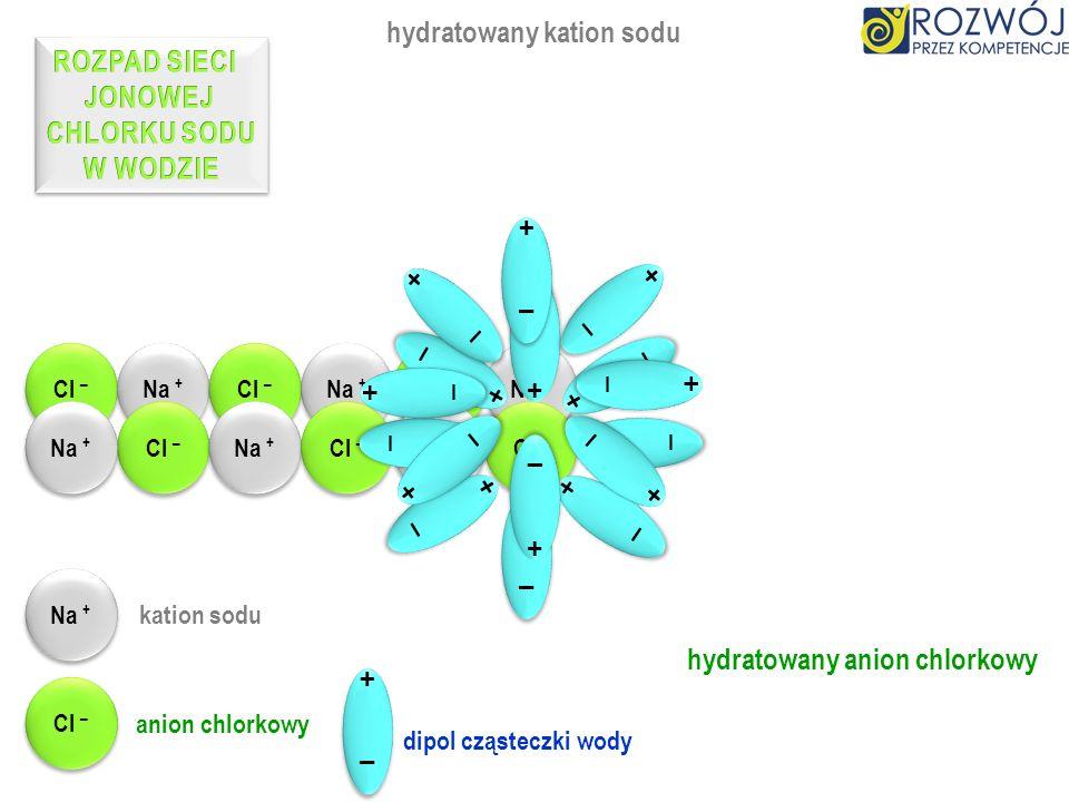 Głównym surowcem do pozyskania chlorku sodu j est sól kamienna, nazywana halitem. Halit jest pozyskiwany metodami kopalnymi. Otrzymuje się go także po
