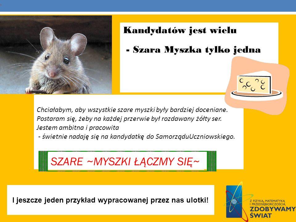 Kandydatów jest wielu - Szara Myszka tylko jedna Chciałabym, aby wszystkie szare myszki były bardziej doceniane. Postaram się, żeby na każdej przerwie
