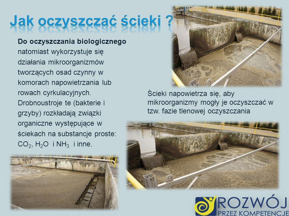 Do oczyszczania biologicznego natomiast wykorzystuje się działania mikroorganizmów tworzących osad czynny w komorach napowietrzania lub rowach cyrkulacyjnych.