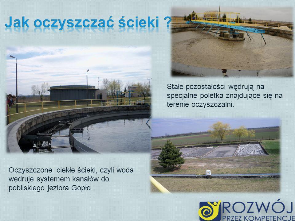 Oczyszczone ciekłe ścieki, czyli woda wędruje systemem kanałów do pobliskiego jeziora Gopło. Stałe pozostałości wędrują na specjalne poletka znajdując