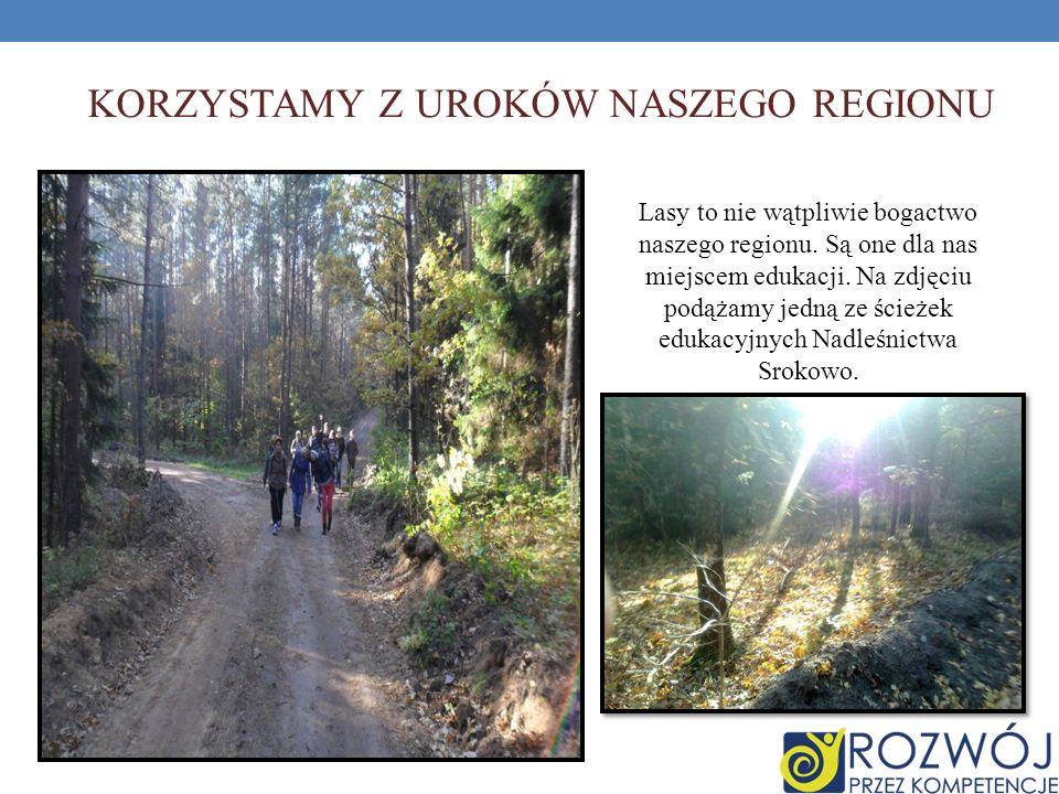 KORZYSTAMY Z UROKÓW NASZEGO REGIONU Lasy to nie wątpliwie bogactwo naszego regionu. Są one dla nas miejscem edukacji. Na zdjęciu podążamy jedną ze ści