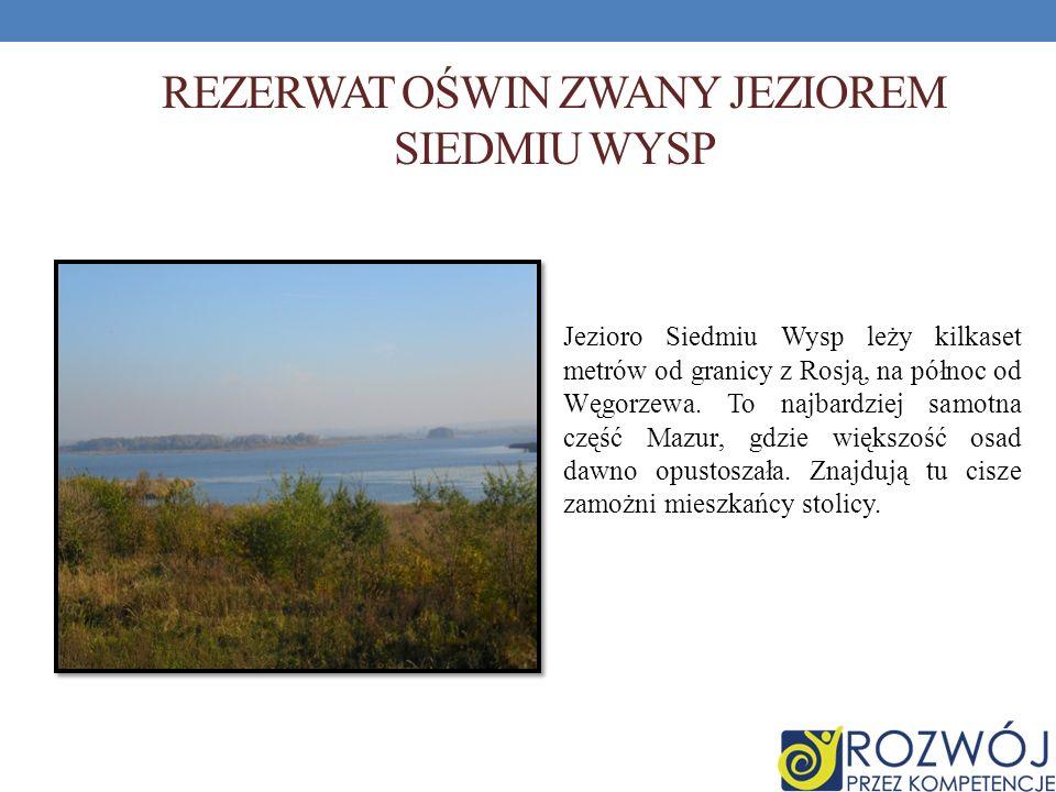 REZERWAT OŚWIN ZWANY JEZIOREM SIEDMIU WYSP Jezioro Siedmiu Wysp leży kilkaset metrów od granicy z Rosją, na północ od Węgorzewa. To najbardziej samotn