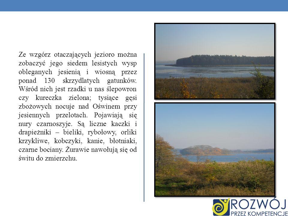 Ze wzgórz otaczających jezioro można zobaczyć jego siedem lesistych wysp obleganych jesienią i wiosną przez ponad 130 skrzydlatych gatunków. Wśród nic