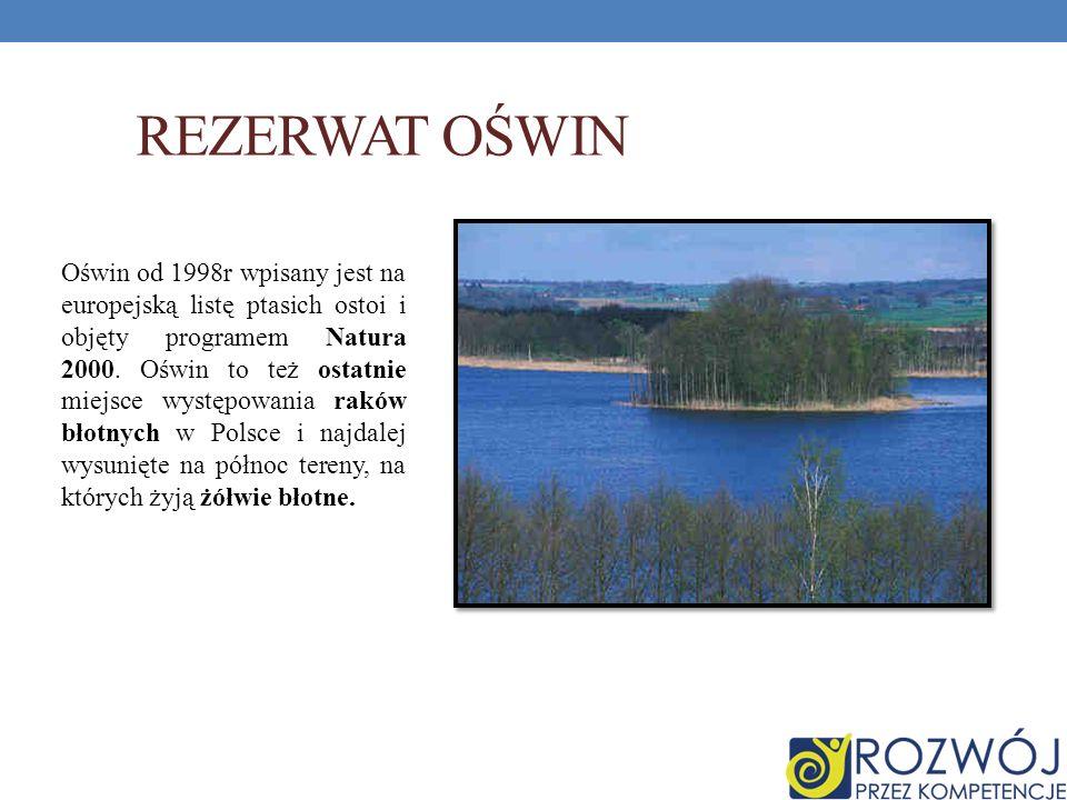 REZERWAT OŚWIN Oświn od 1998r wpisany jest na europejską listę ptasich ostoi i objęty programem Natura 2000. Oświn to też ostatnie miejsce występowani
