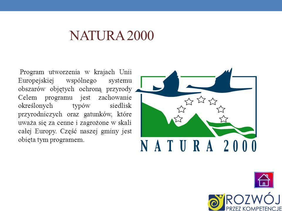 NATURA 2000 Program utworzenia w krajach Unii Europejskiej wspólnego systemu obszarów objętych ochroną przyrody Celem programu jest zachowanie określo